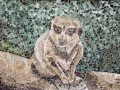 Imagine That meerkat torn paper collage Tamara Jaeger