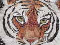 The Danger Lies Within tiger torn paper collage Tamara Jaeger