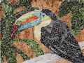 Rainforest Encounter keel-billed toucan torn paper collage Tamara Jaeger