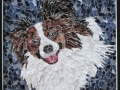 Grendel_Tamara_Jaeger_Papillon_Dog_Collage